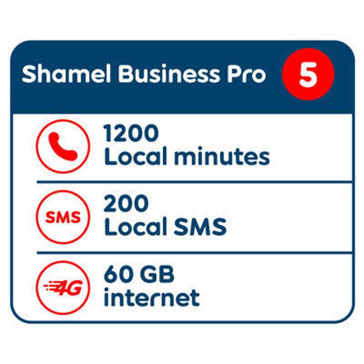 Picture of Shamel Business Pro 5