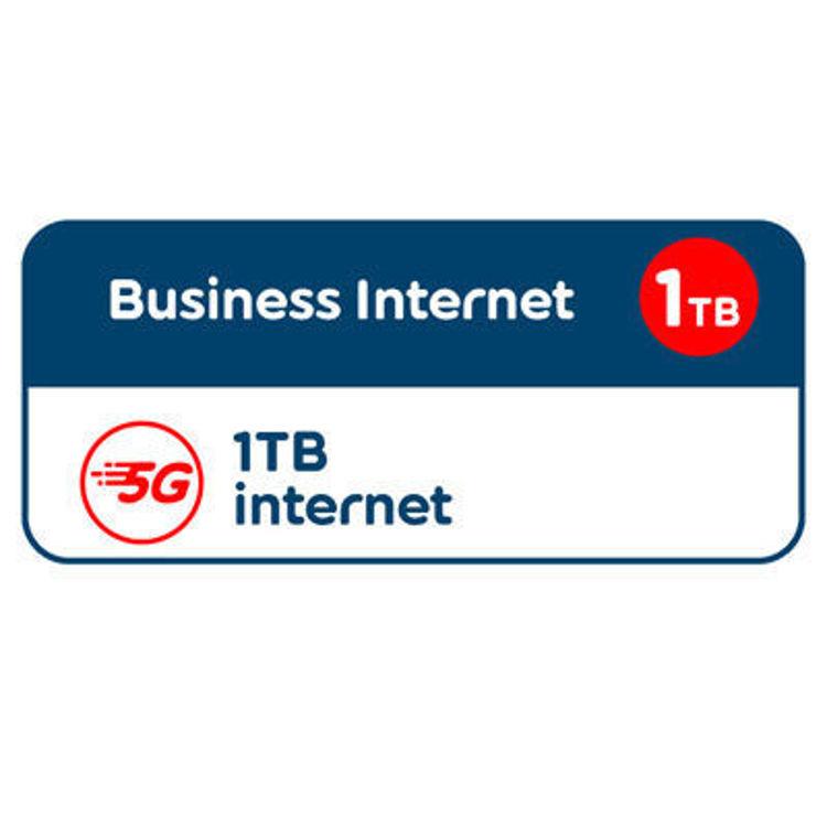 صورة Business Internet - 1 TB
